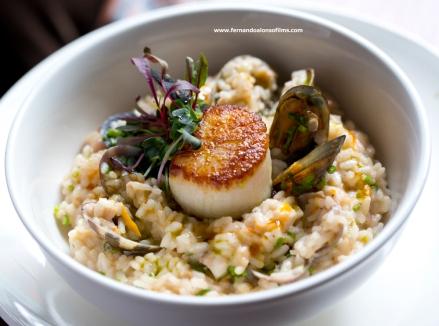 food photography restaurants New York