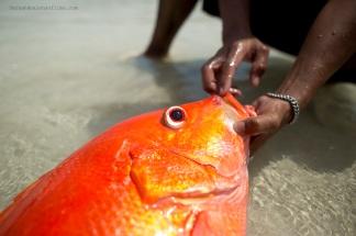 Lombok-Playa2 copia